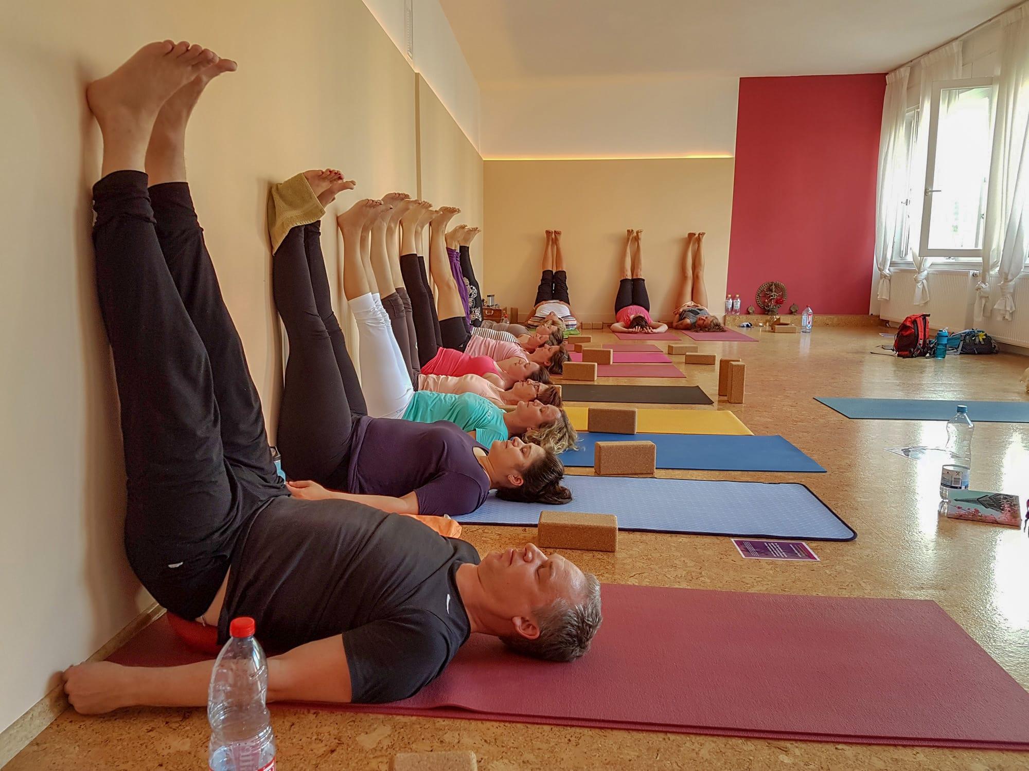 Yogalehrer-Fortbildungskurs mit Spiraldynamik® | YOGA-MA – Dein Yoga-Studio in Stuttgart